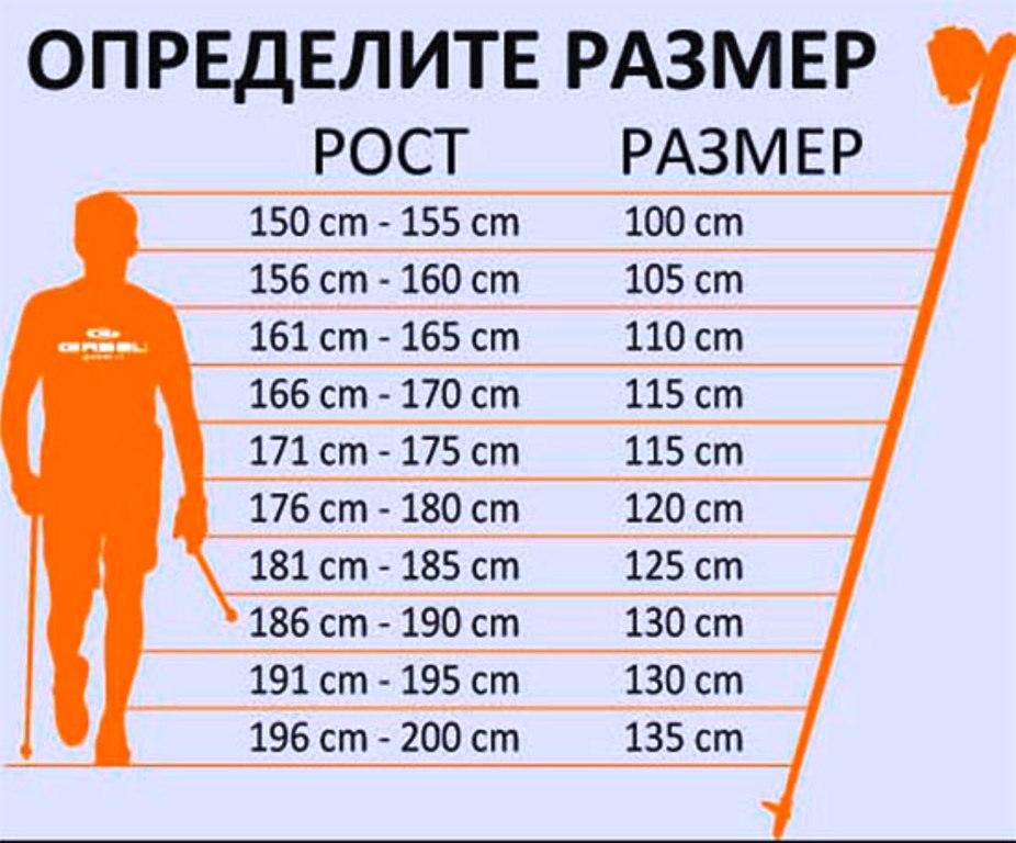 Таблица определения размера палок для ходьбы