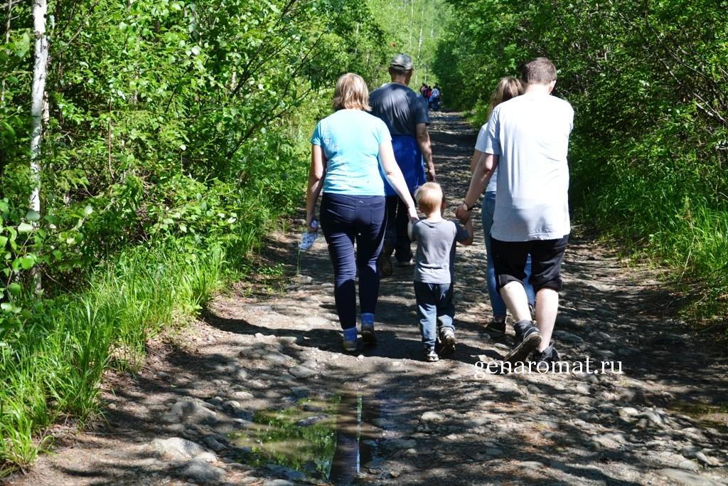 В путь всей семьей