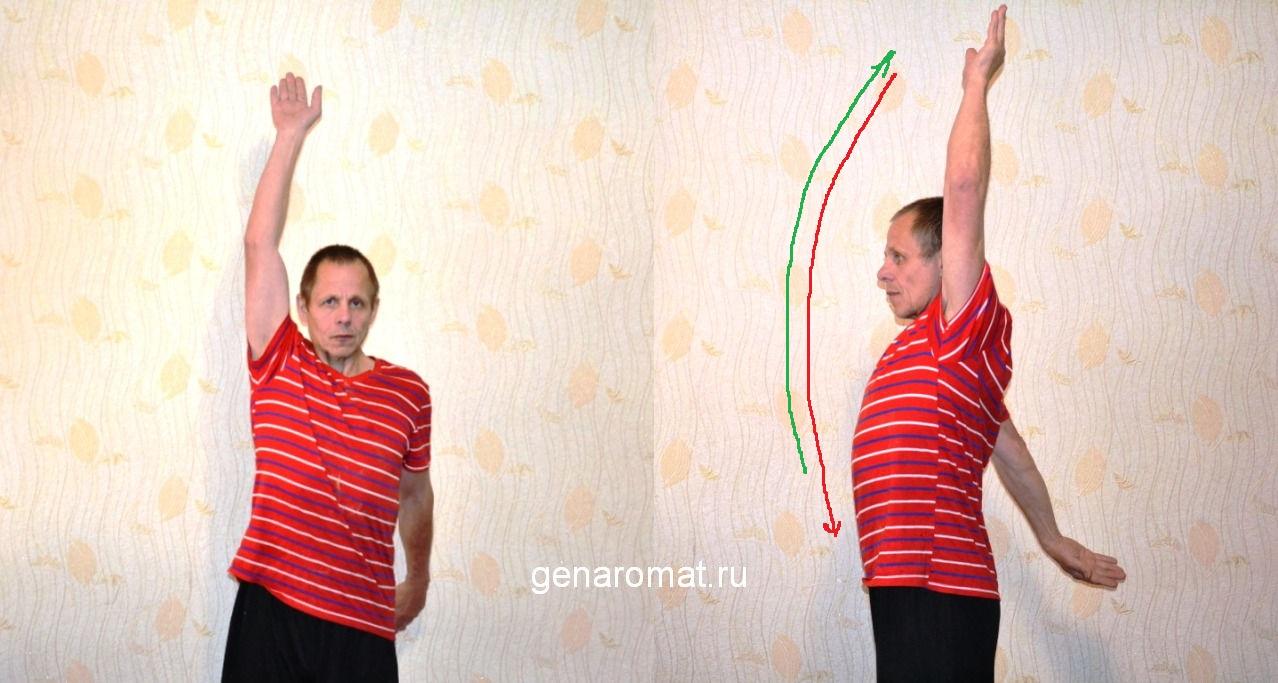 Упражнения для плеча-4