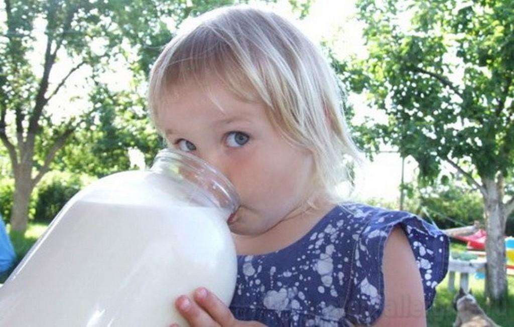 Молоко- польза или вред