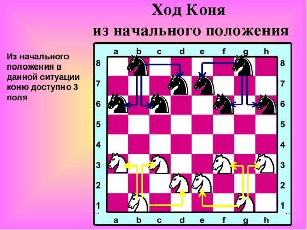 Ход конем в шахматах