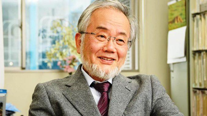 Ёсинори Осуми-1