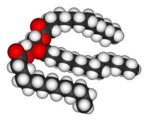 Молекула липида