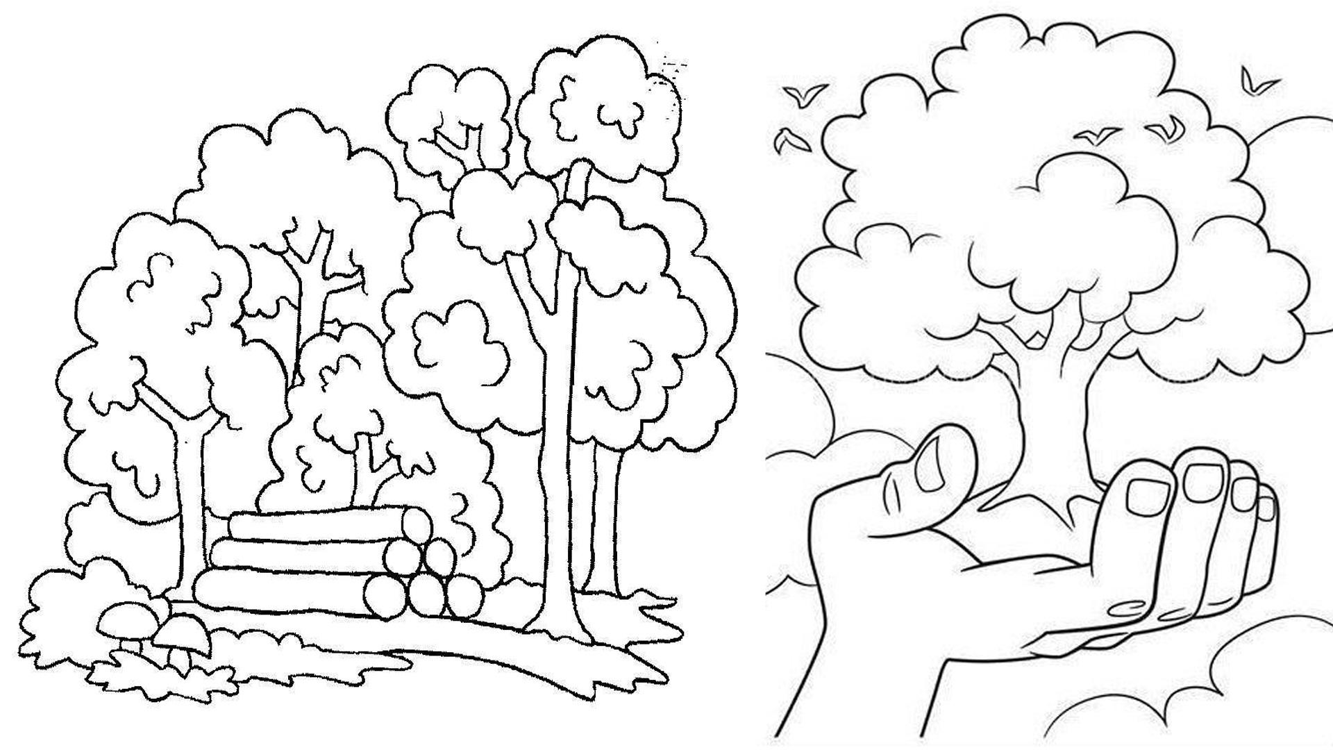Берегите растения